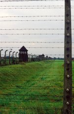 Auschwitz-Birkenau tours as the most attractive way to take an influential history lesson.
